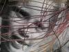 Inner Nets